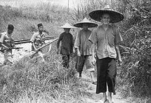 Colonial papers: Burmese Bandit Hunt during Malayan Emergency
