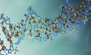 DNA alternative
