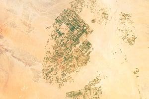 Satellite Eye on Earth: abundant green fields in Saudi Arabia