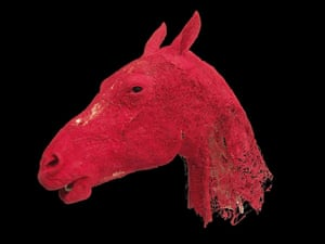 Animal Inside Out: Horse