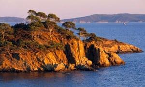 Port Cros biodiversity