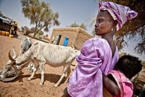Sahel Crisis: Drought response in Mauritania