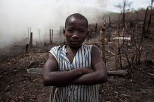 Sierra Leone after Taylor: A boy working to make charcoal stands in a slashed and burned area