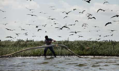 BP oil spill deepwater