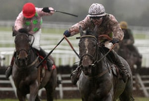 racing: Horse Racing