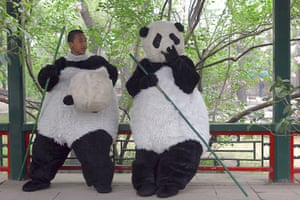 best of the week: Students of Shichahai Sports School, dressed in panda costumes
