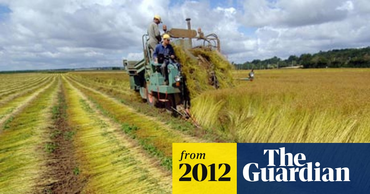 Farmers from western Europe look to Romania for pastures new