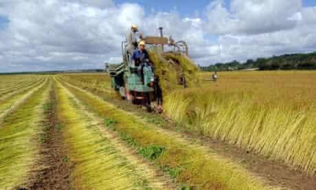 romania farmland buyers