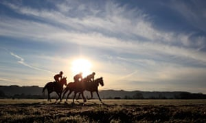 Horses are taken for an early morning ride on the gallops at the Cheltenham racecourse