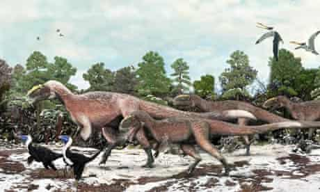 Giant Feathered Dinosaur Found In China Was Too Big To Fly Dinosaurs The Guardian