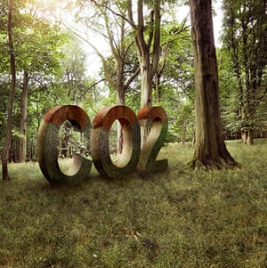 Getty gallery: CO2 in forest