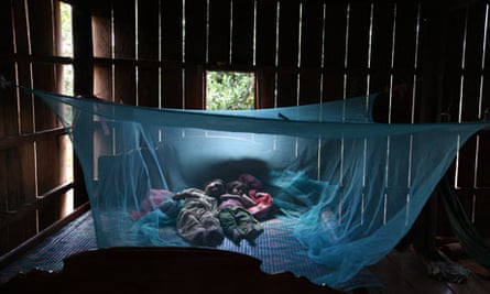 Malaria bednet, Cambodia