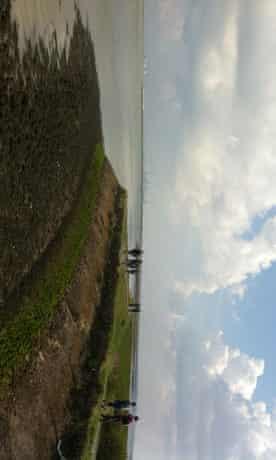 Kent marshes