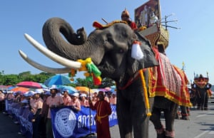 May Day rallies 2012: Bangkok: Thai workers parade next to elephants