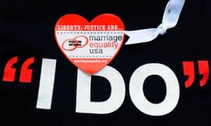 pro same sex marriage interest groups in Lansing