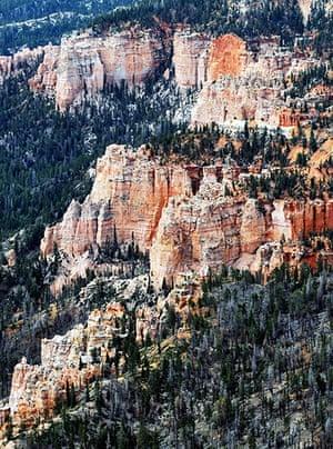 Week in Wildlife: An aerial view of sandstone formations in Bryce Canyon National Park, Utah