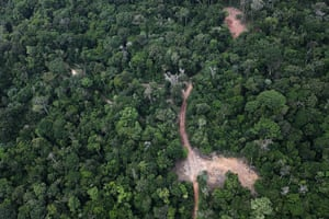 Pig iron in Brazil: Deforestation and Illegal charcoal kilns in Maranhão state