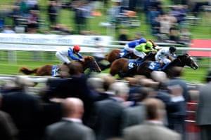 sport: York Races
