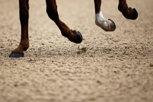 24 hours: The hoofs of Macrider Premier  ridden by Ata van Essen