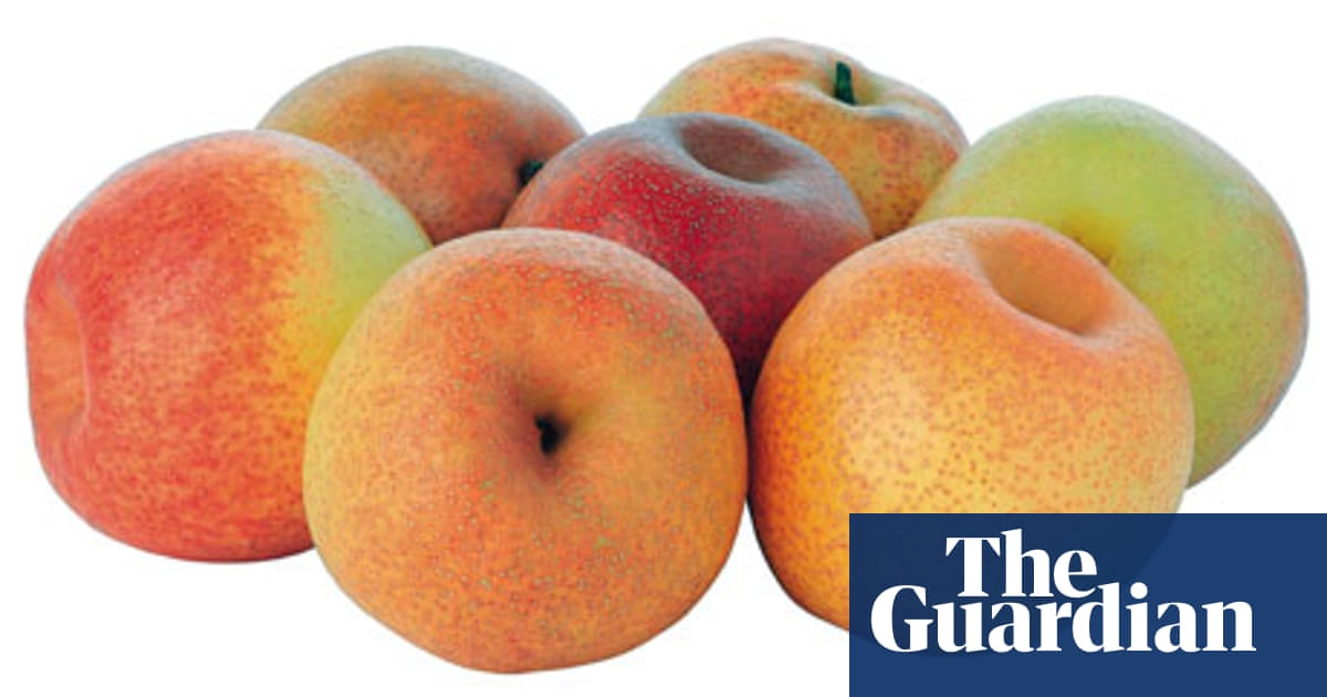 The Papple Tasted And Tested Food The Guardian
