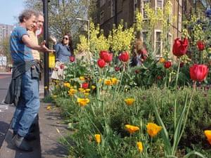 Chelsea Fringe: A guerrilla garden
