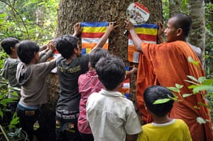 Week in wildlife: Cambodian Buddhist monk who lives in Aoral wildlife sanctuary