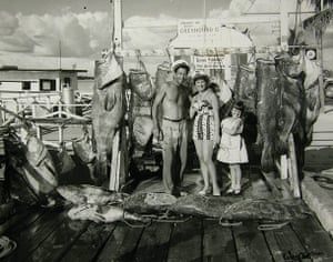 Ocean of Life : Recreational fish landings into Key West