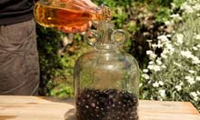 Adding cider to sloes