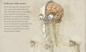 Leonardo da Vinci: Anatomy iPad app