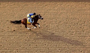Kentucky Derby: Kentucky Derby hopeful Optimizer with his exercise rider