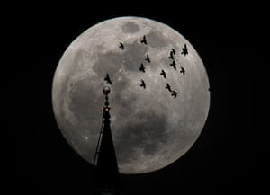 Supermoon: The full moon rises behind a mosque as birds fly in Amman
