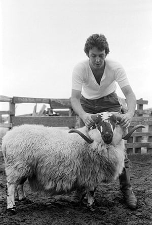 RAM: Paul McCartney and the ram