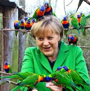 Angela Merkel gallery: Angela Merkel 8