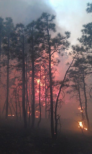 Wildfires in the US: Handout image from the Whitewater-Baldy Complex fire in New Mexico