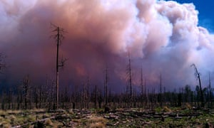 New Mexico wildfire fire