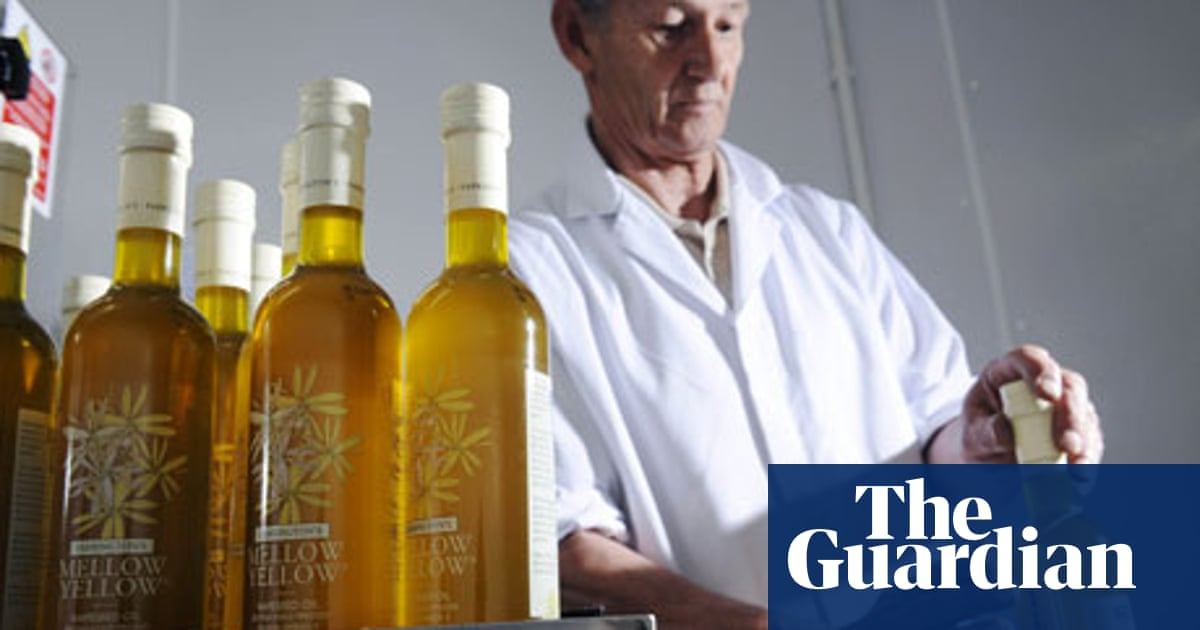 The Rise Of Rapeseed Oil Food The Guardian