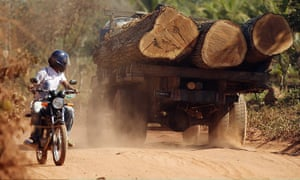 Amazon deforestation : Truck transports illegally harvested logs