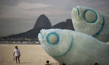 Rio de Janeiro fish
