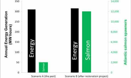 salmon energy