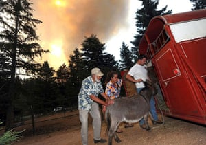 Wildfires in Colorado: A family evacuate their animals from the path of the fire in Colorado
