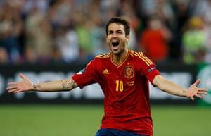 sport13: Spain's Fabregas reacts