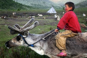 Photo Comp June: A young Tsaatan boy rides by on his reindeer in East Taiga, Mongolia.