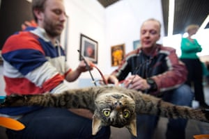Orville, the flying cat: The Orvillecopter is being prepared before flying