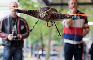 Orville, the flying cat: The Orvillecopter By Dutch Artist Jansen in flight