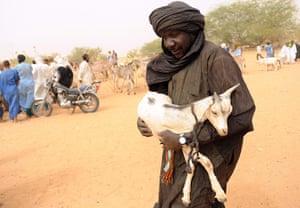 Shepherd in Mauritania