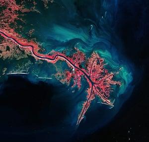 Satellie Eye on Earth: The Mississippi River Delta