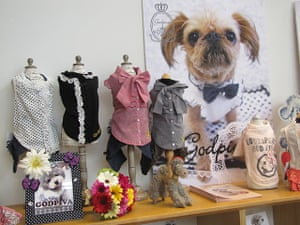 Japanese pet dogs: Designer clothes for dogs