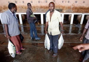 Somalia Goran Tomasevic: A man carries fish in a market in Mogadishu
