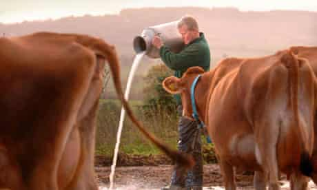 Dairy farmer David Handley protesting against low wholesale milk prices in 2005