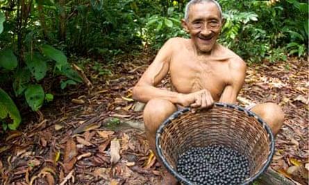 Ladir basket acai berries
